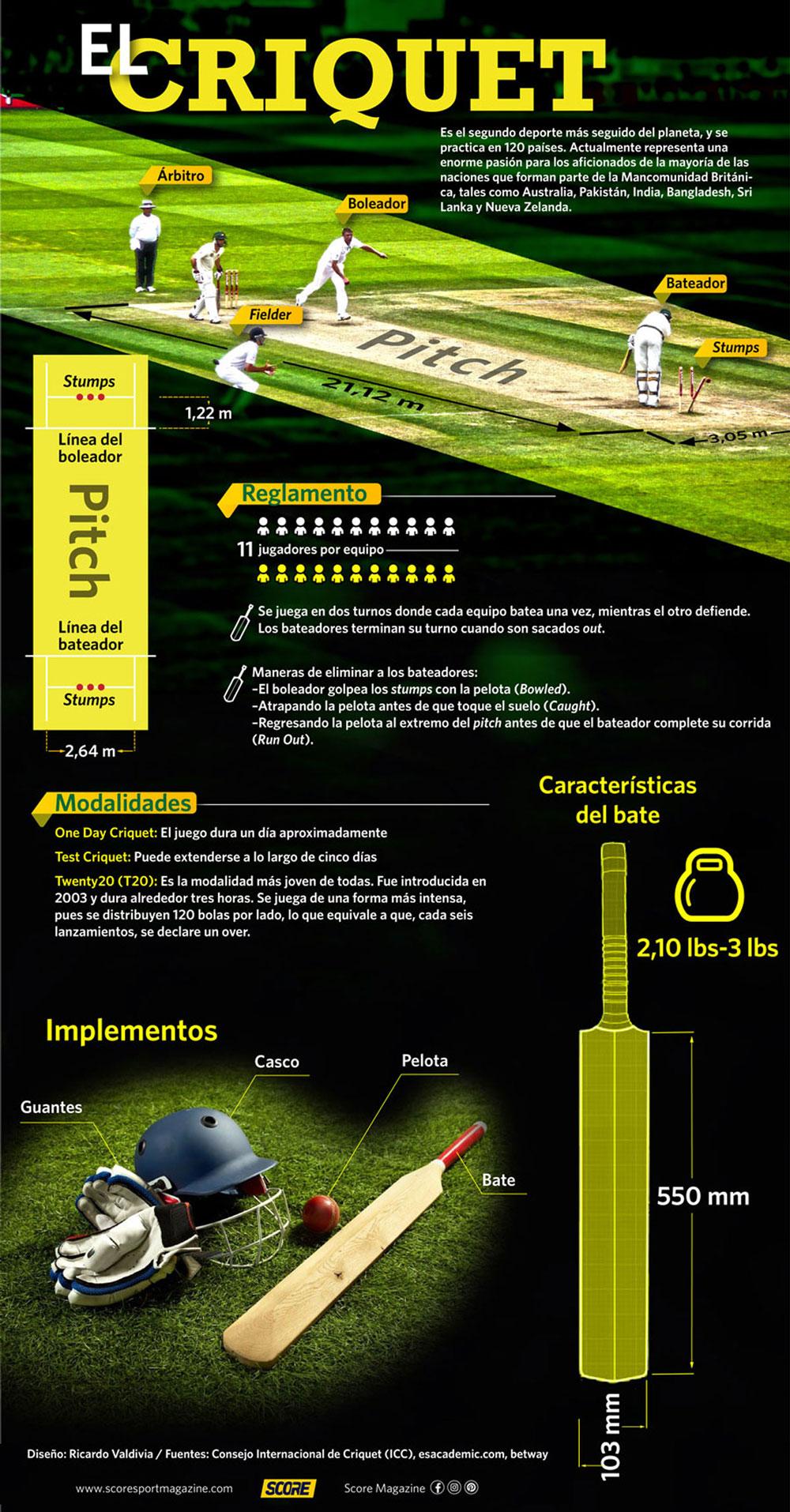 Infografía Criquet